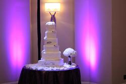 Cake Pin Spotting LED Rental Arizona