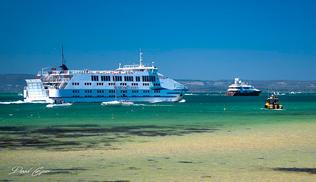 Sorrento-Queenscliff Ferry