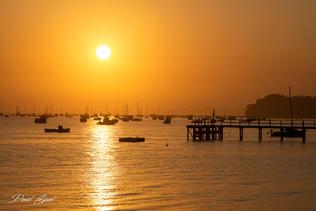 Golden Morning in Sorrento