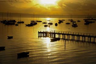 Golden Sunrise - Camerons Bight