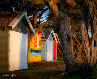 Blairgowrie Boat Sheds
