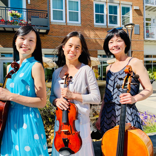 Meet the Players--String Trio from Seattle Hub
