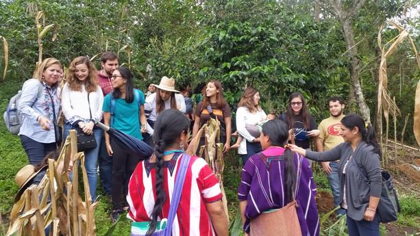 visita a la milpa en la comunidad