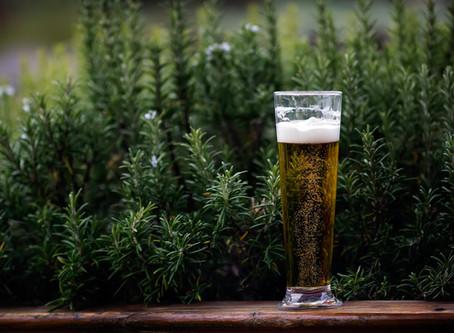 Les Bières de l'automne : notre sélection pour vous