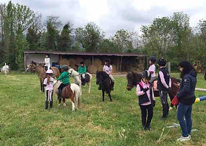 GREST Lombardia, pony games Lombardia, dressage Lombardia, scuola pony, scuola equitazione, campus equitazione, scuola dressage Lombardia, cavalli dressage Lombardia