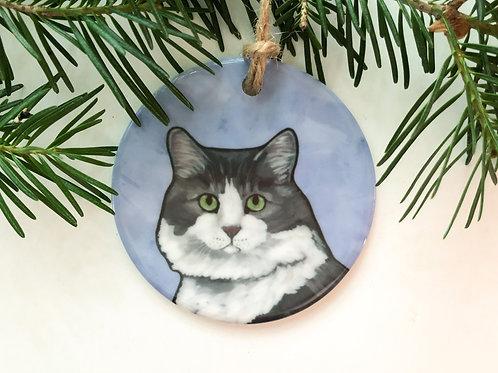 Cat   Gray & White