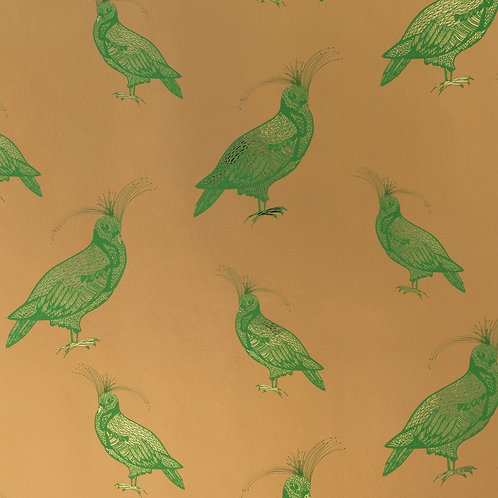 FANCY PIGEON | EMERALD ON CHAMPAGNE
