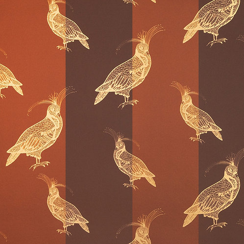 FANCY PIGEON | GOLD ON ESPRESSO STRIPES