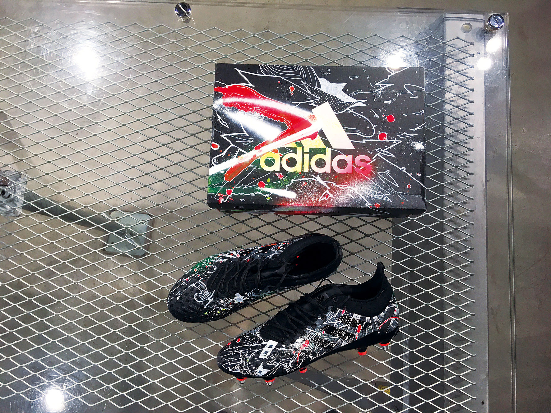 Adidas Shoes&Box Painting
