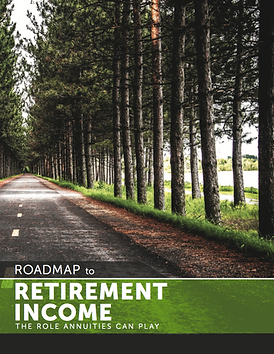 roadmap to retirement income report