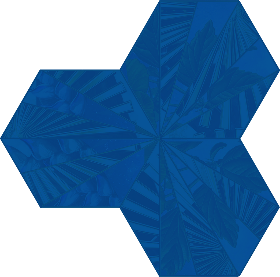 Decorative Hex.png