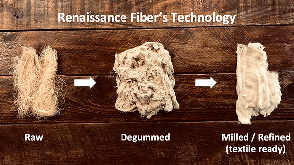 RF Technology Pic.png