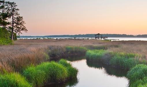 Marsh Waters.png