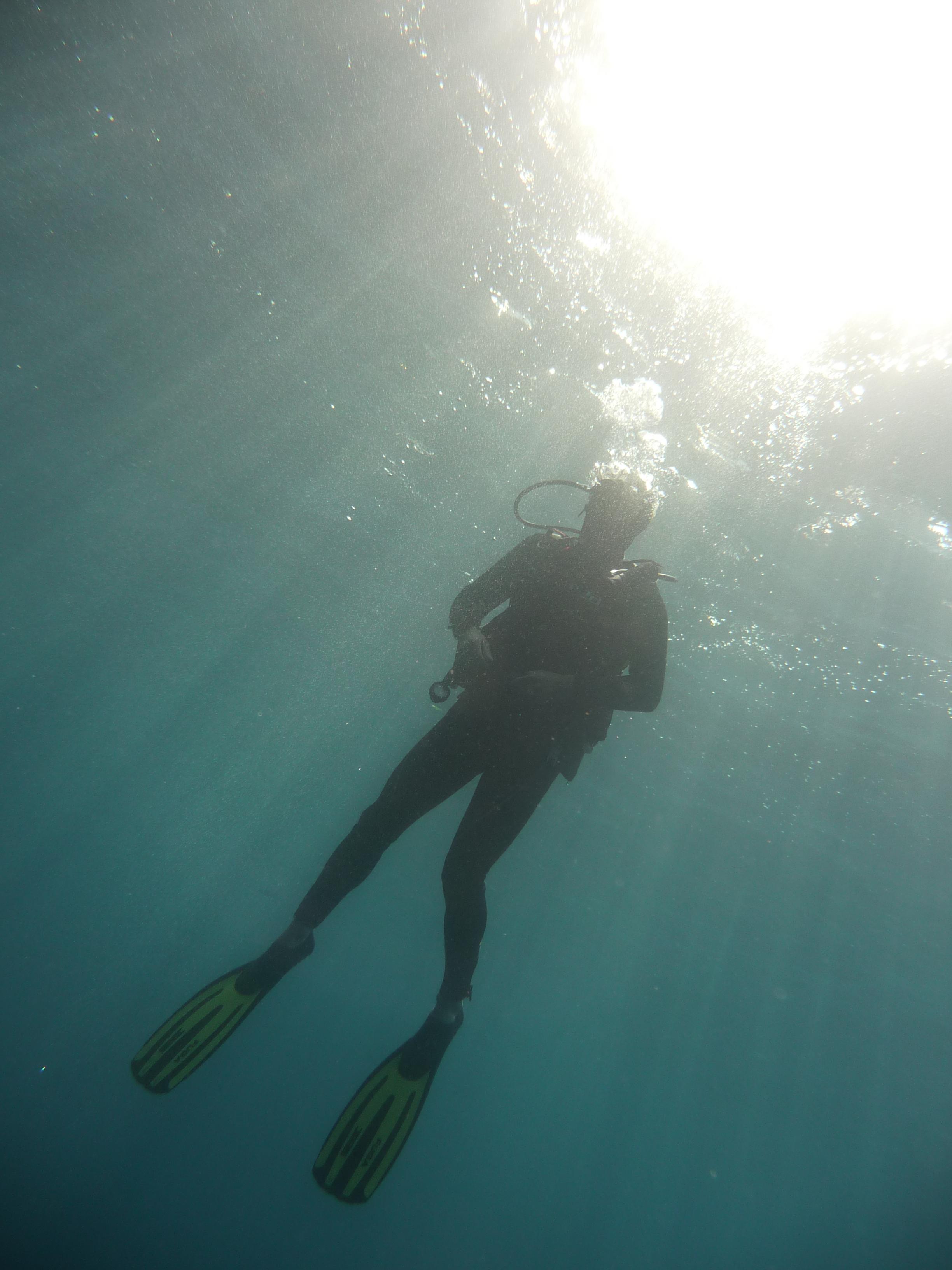 Luminosité sous marine