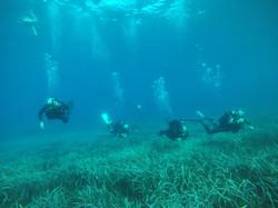 Assurez la sécurité de vos plongeurs