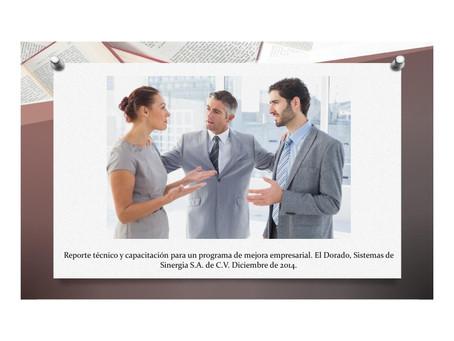 Programa de Mejora Empresarial