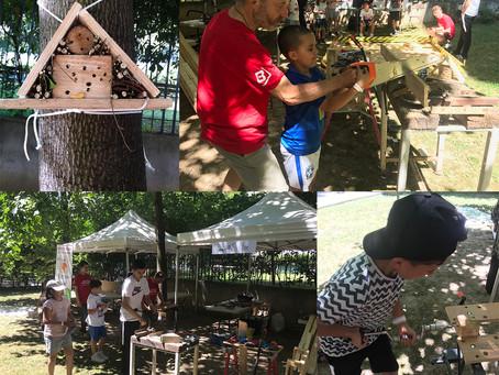 Atelier hôtel à insectes en pied d'immeuble le 3 juillet