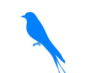 Weary & Burdened Ep. 011: Bluebird