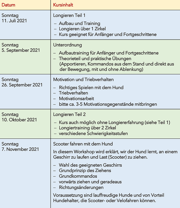 Tageskurse Sommer Herbst 2021.png