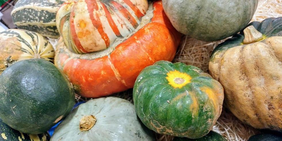 Its Autumn time - Its Pumpkin time - £35