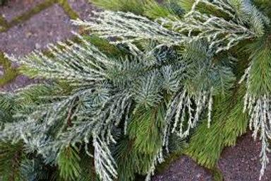 Make at Home - Foliage garland Kit