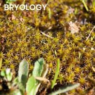 Bryology