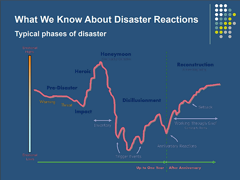 What We Know About Disaster Reactions graph