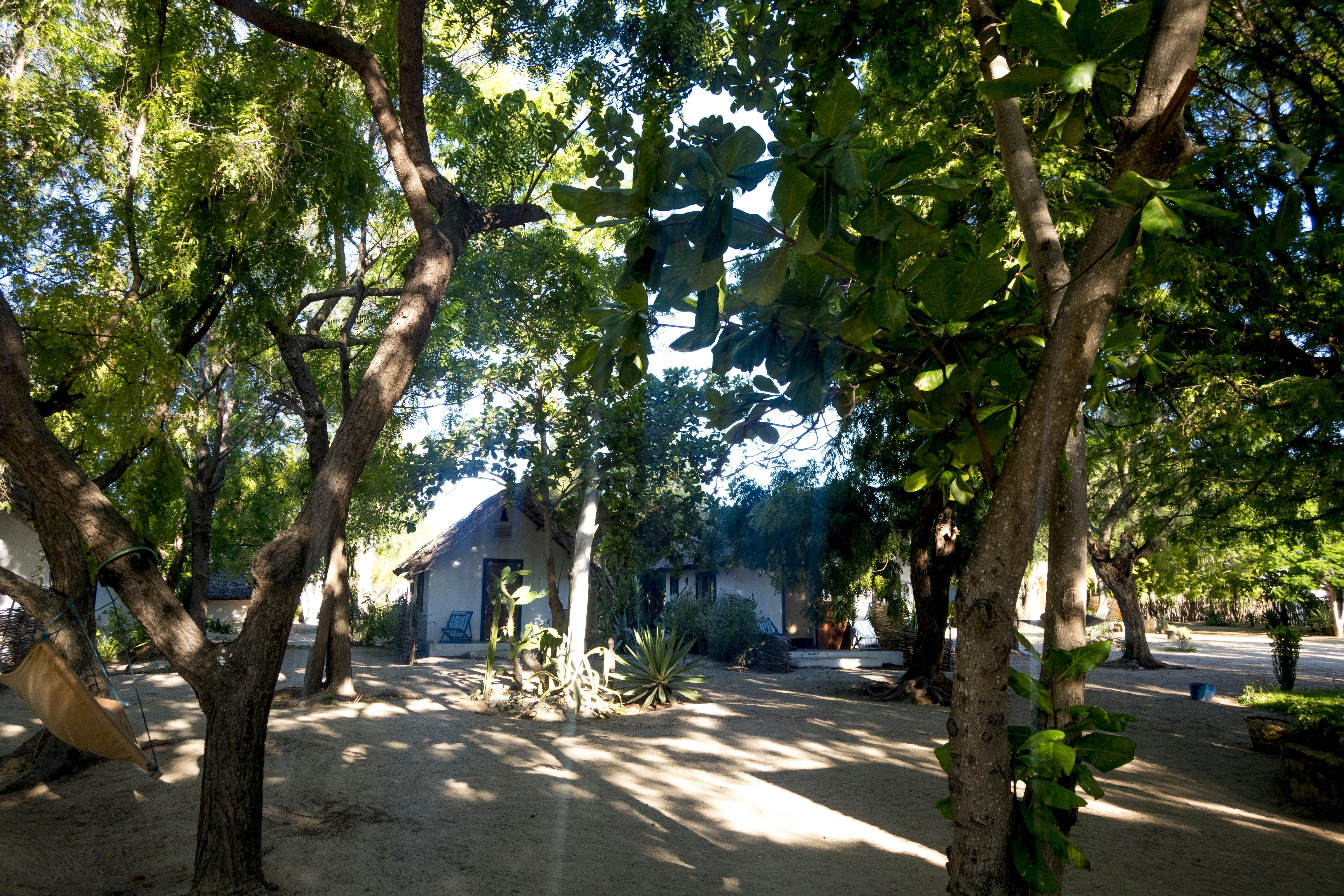 Madagascar2018_0228