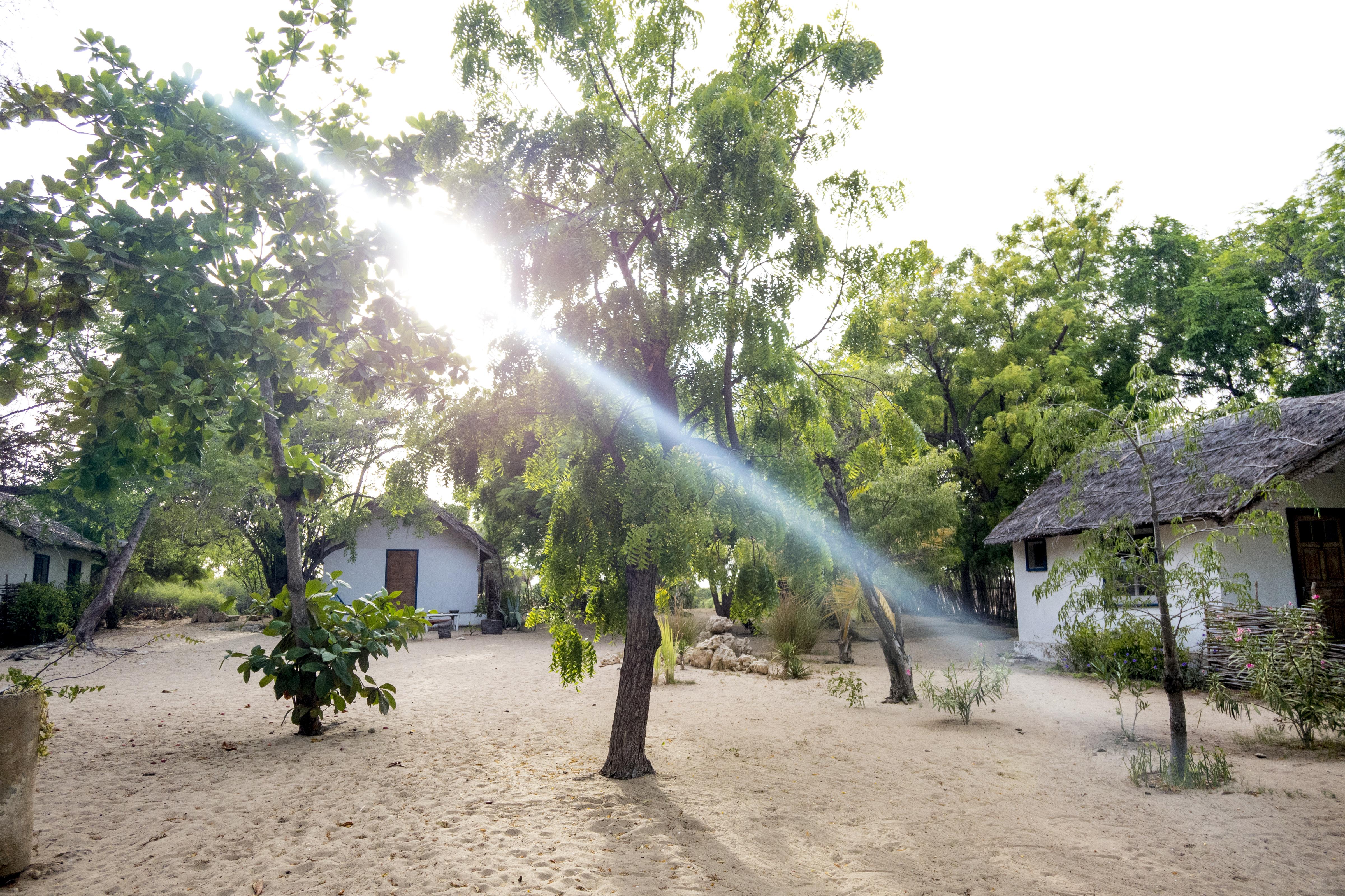 Madagascar2018_0195 copia