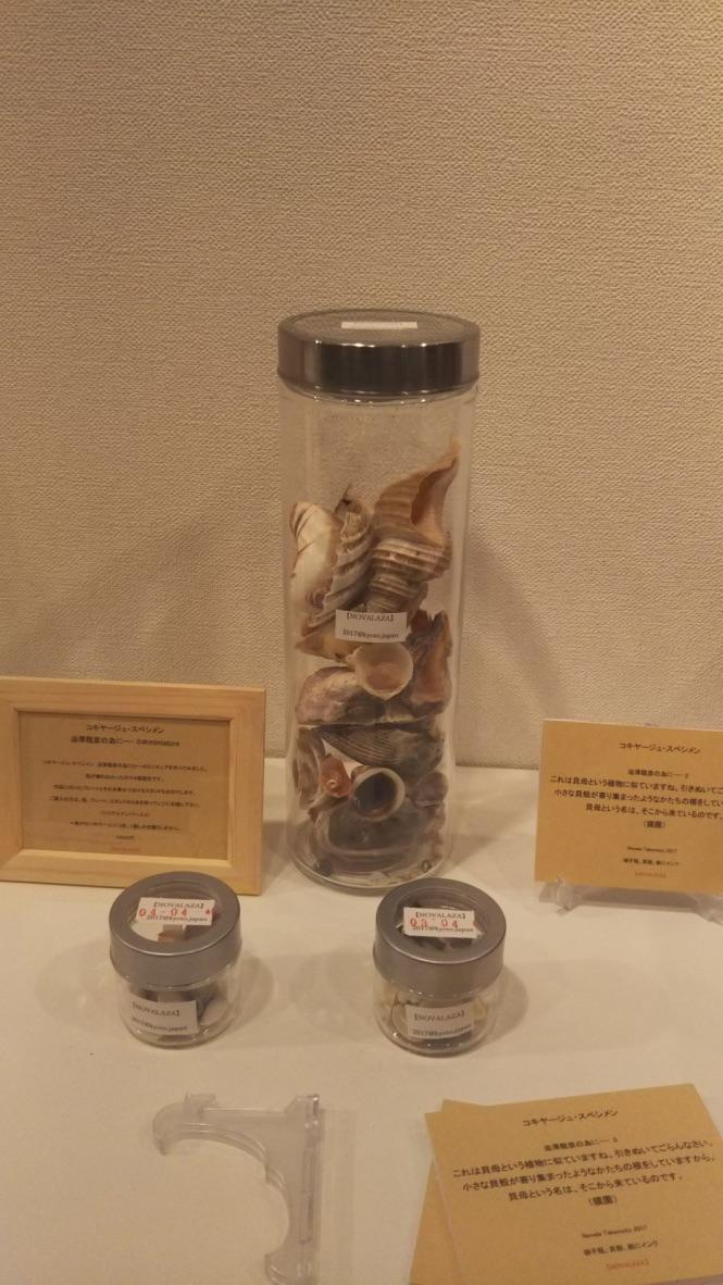coquillage specimen 0#miniature
