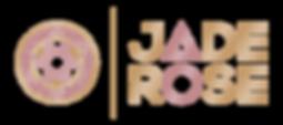 Logo_transparent_lightBG.png