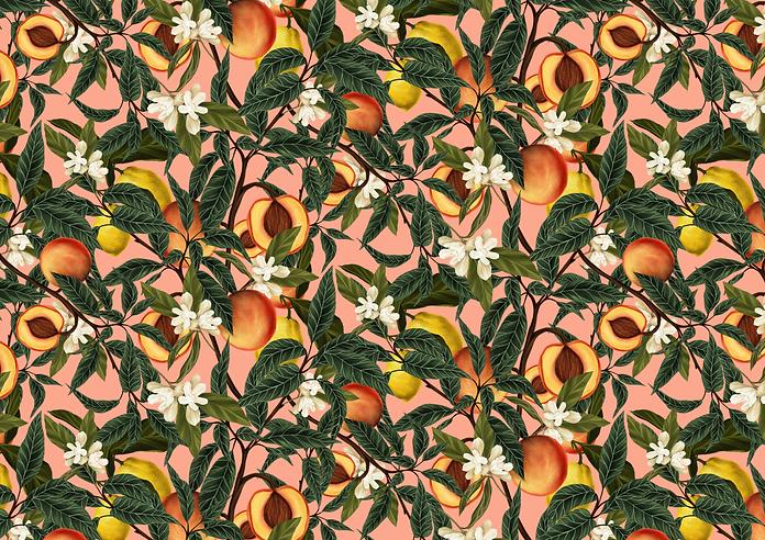 AOH-A5-Peach-print.png