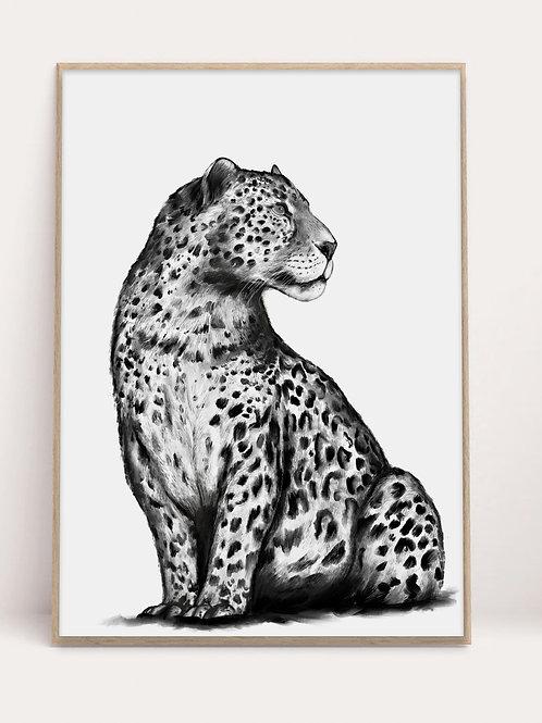 Leopard Print | Fine Art | Black & White | Jaguar | Wall Art | Interiors