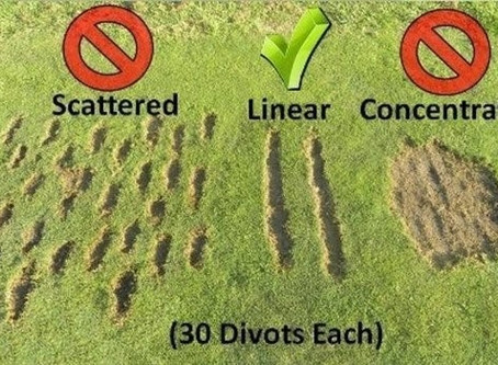Practice Areas and Driving Range