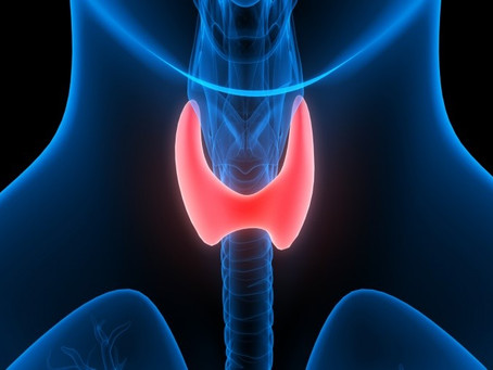 Thyroid: Signs, Symptoms and Treatment