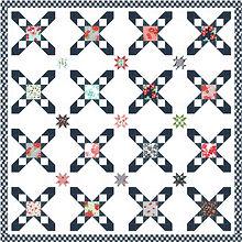 Star Crossed.jpg