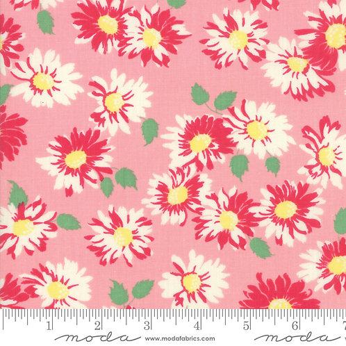 Cheeky 31143 12 Pink Floral Moda Urban Chicks