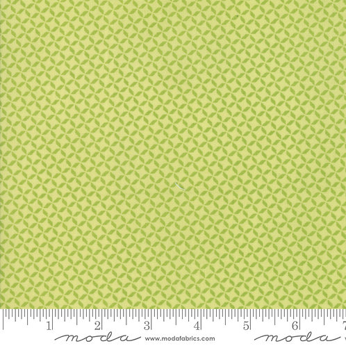 Sunnyside Up 29056 32 Lime Green Tonal Moda Corey Yoder