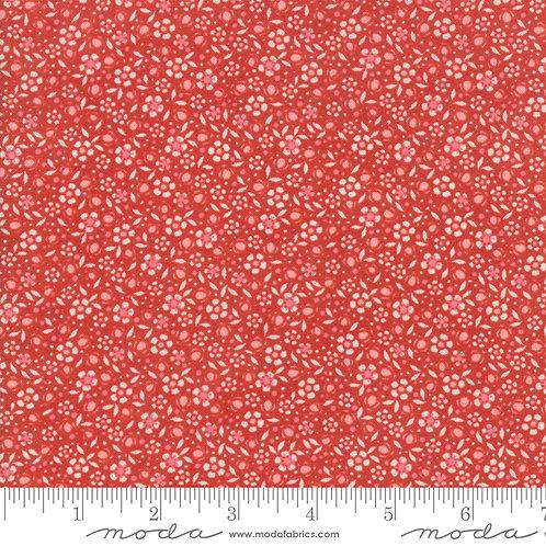 Biscuits & Gravy 30483 11 Red Orange Floral Moda Basic Grey