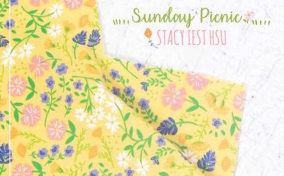 Sunday Picnic SLIDE.jpg