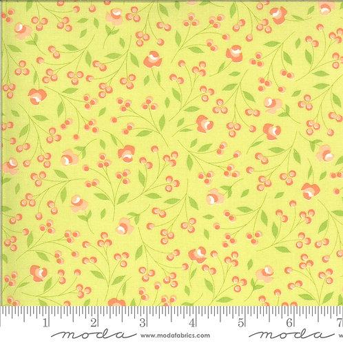 Apricot & Ash 29103 17 Green Pink Lime Floral Moda Corey Yoder