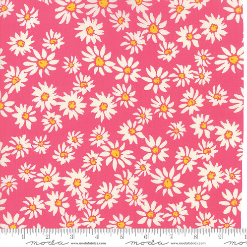 Painted Garden 11812 13 Pink Daisy Crystal Manning