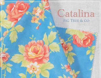 Catalina SLIDE.jpg