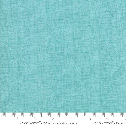 Abby Rose 48626 125 Turquoise Tonal Moda Robin Pickens