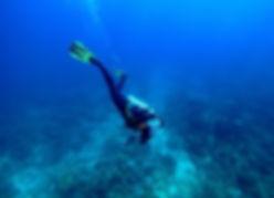 Tubbataha diving Liveaboard