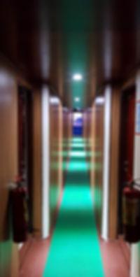 MY Narayana hallway