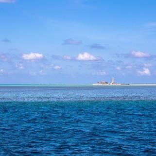 Tubbataha Reef Coopers Narayana (1).jpg