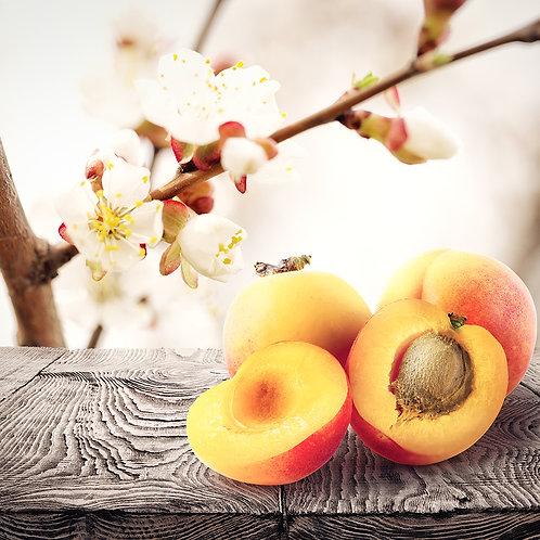 Apricot Freesia