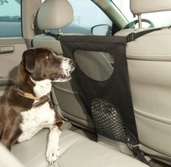 Como transportar o Pet com Segurança no carro. Dicas de como andar com o cão dentro do carro.
