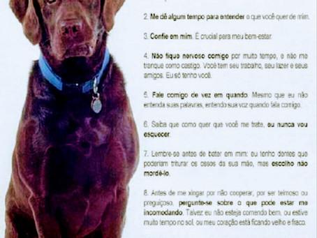 Os 10 Mandamentos Caninos: